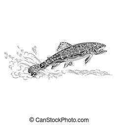 Brown trout salmonidae as vintage