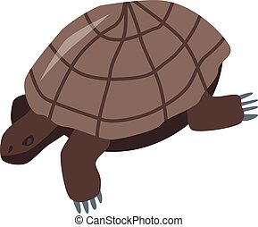 Brown turtle icon, isometric style