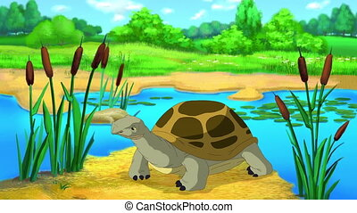 Big brown turtle sits near the pond on a sunny summer day. Handmade 2D animation.