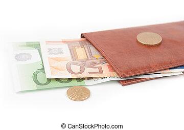 Brown wallet with EU money