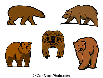 Brown wild bear characters isolated on white for mascot or...