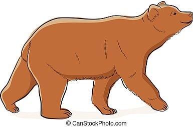 Brown Wild Bear Vector Illustration