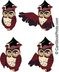 Brown Wise Owl - Cute cartoon wise owl of brown color in...
