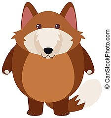 Brown wolf on white background