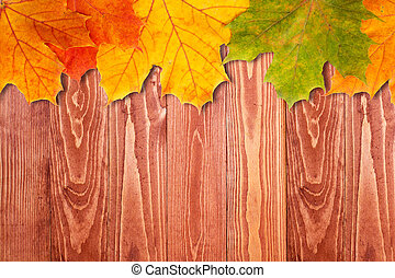 Brown wooden background and autumn leaves