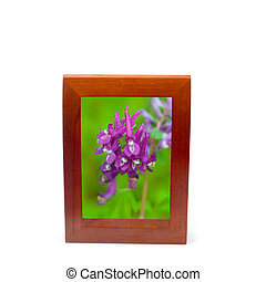 brown wooden frame isolated
