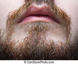 brownish beard and mustache on a man closeup