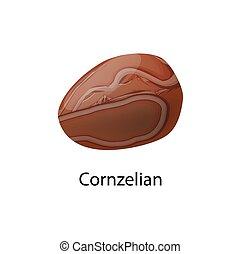 brownish-red, minéral, vecteur, carnelian, cornelian, ou