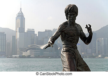 bruce, protezione, statua, in, hong kong