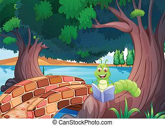 brug, boek, worm, lezende