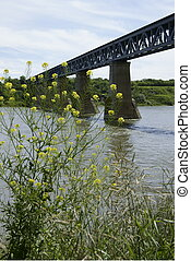 brug, canadees, mcdonald, pacific, 1908, spoorweg