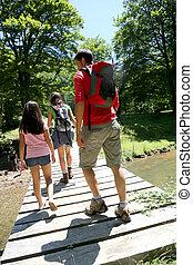 brug, wandelende, back, gezin, aanzicht