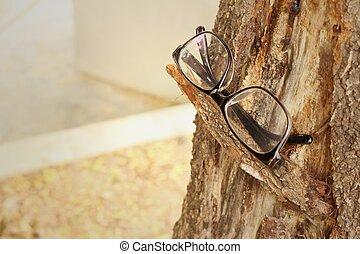 bruine , boom., achtergrond, bril