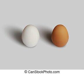 bruine , grijs, eitjes, vrijstaand, achtergrond., vector, ontwerp, realistisch, witte , element.