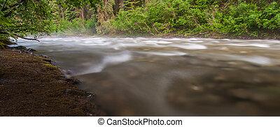 brumeux, écoulement, ruisseau