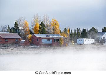 brumeux, brumeux, paysage automne, dans, colorado, usa