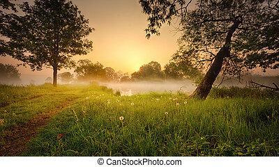 brumeux, levers de soleil