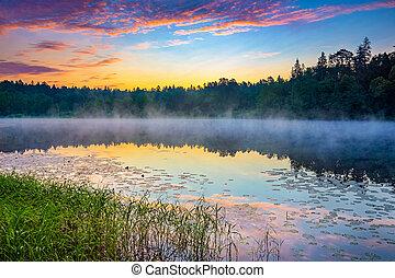 brumeux, levers de soleil, sur, a, lac