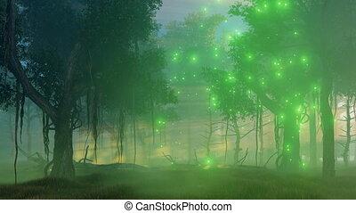 brumeux, magie, lumières, forêt, nuit, 4k
