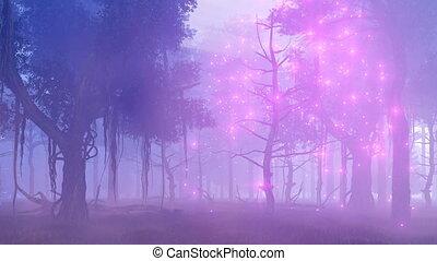 brumeux, magique, 4k, nuit, fireflies, forêt