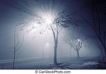 brumeux, nuit