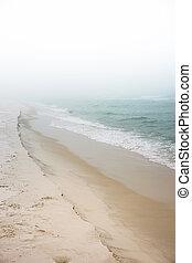 brumeux, plage, rêveur, jour