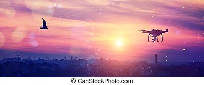 brummen, in, der, himmelsgewölbe, an, majestätisch, bunte, sunset., aus, der, abend, citi., weich, leichter effekt