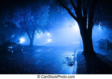 brumoso, calle, noche