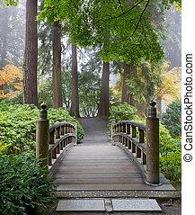 brumoso, mañana, en, de madera, puente pie, en, jardín japonés