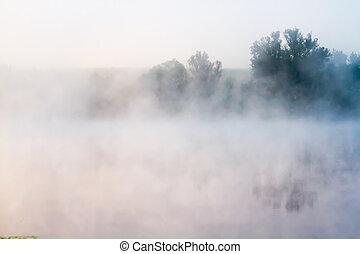 brumoso, mañana, en, el, río