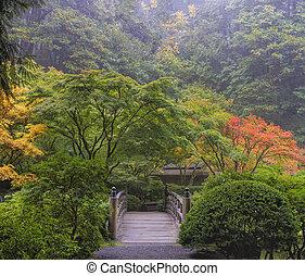 brumoso, mañana, en, jardín japonés