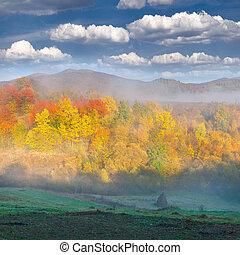 brumoso, paisaje de otoño, en las montañas