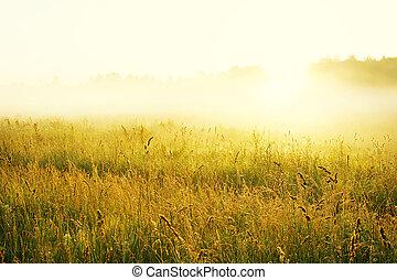 brumoso, salida del sol