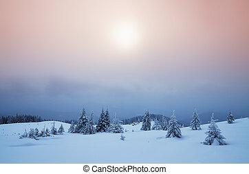 brumoso, tarde, montañas