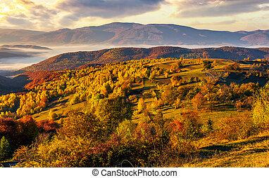 brumoso, y, caliente, salida del sol, en, carpathian, montañas
