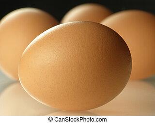 brun, ägg