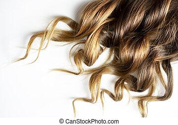brun, bouclé, isolé, longs cheveux, fond, blanc