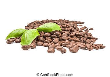 brun, café, coupure, arrière-plan., haricots, sentier, blanc