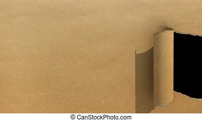 brun, déchiré, papier