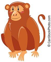 brun, fourrure, singe