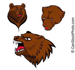 brun, huvuden, björn