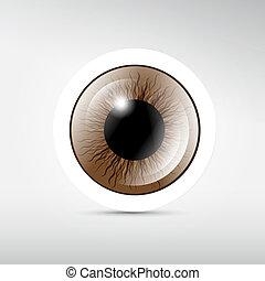 brun, oeil, résumé, gris, vecteur, fond