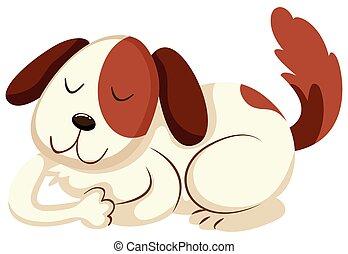 brun, peu, chiot, fourrure, blanc