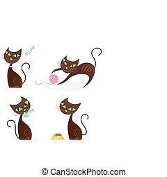 brun, série, chat, 1, divers, poses