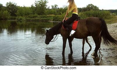 brunatny koń, stoi, jezioro polewają, picie, jeździec