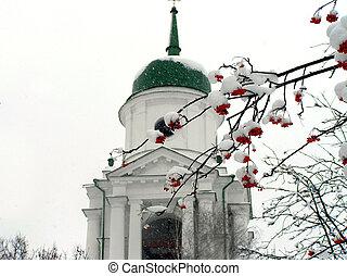 brunches, de, ashberry, en, nieve, contra, el, iglesia