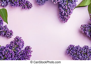 Brunches of purple lilac flowers on the pink background.