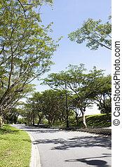 brunei, landscaped, straat