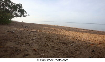 brunette girl runs on sand beach at dawn