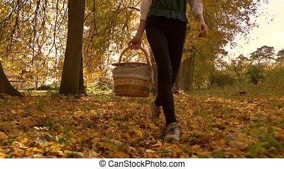 Brunette girl walking through autumn woods holding a picnic...